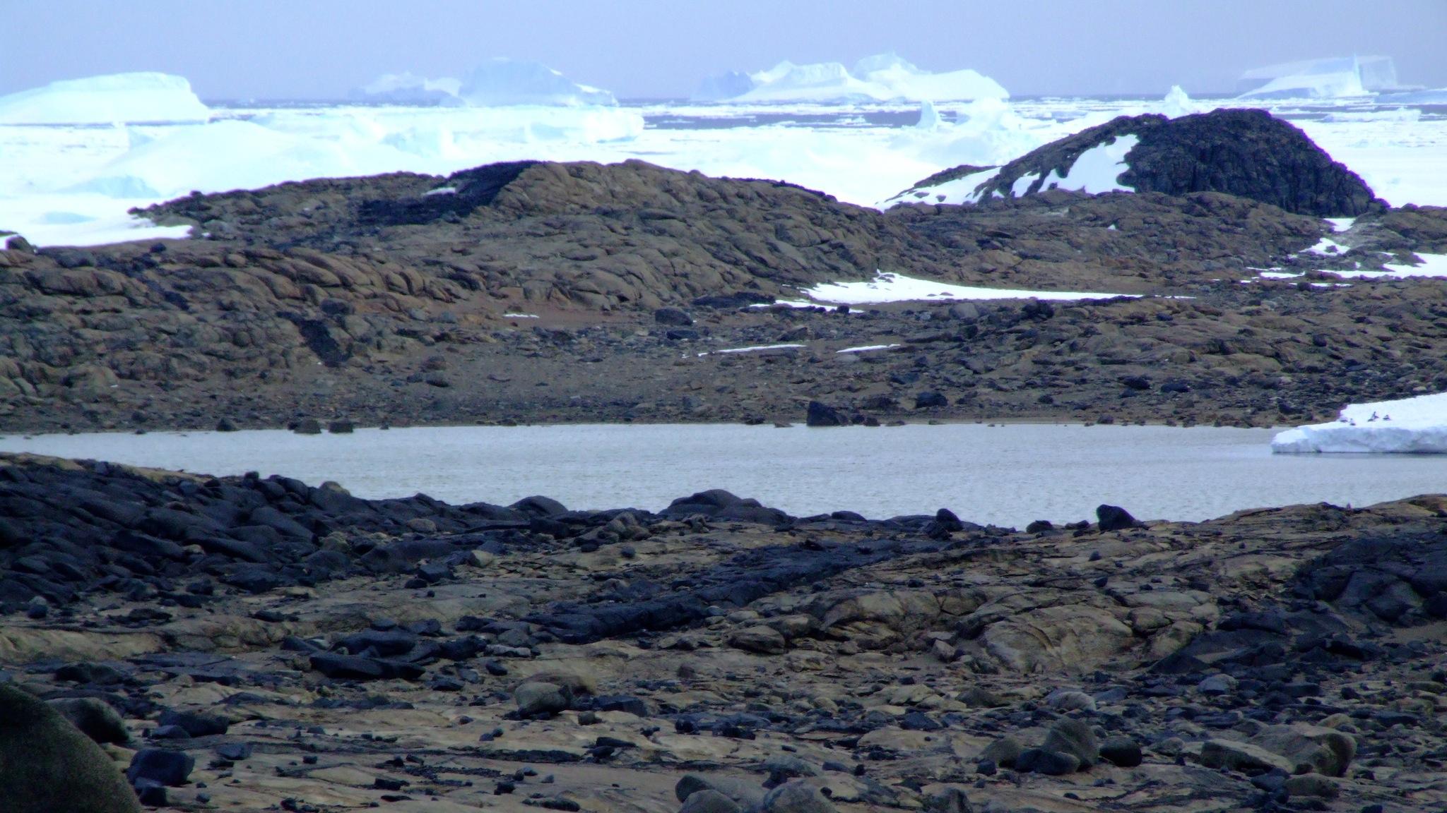 Organic Lake, Antarctica