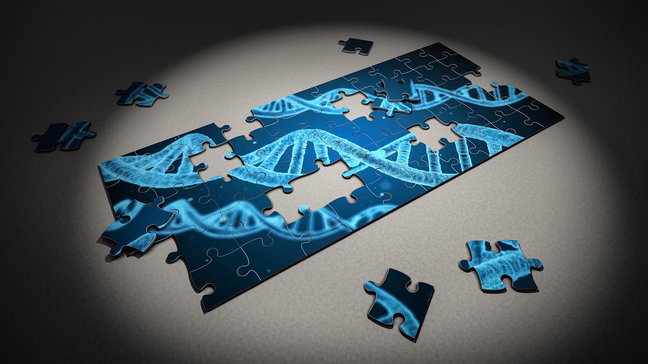 puzzle-2500333_1920.jpg