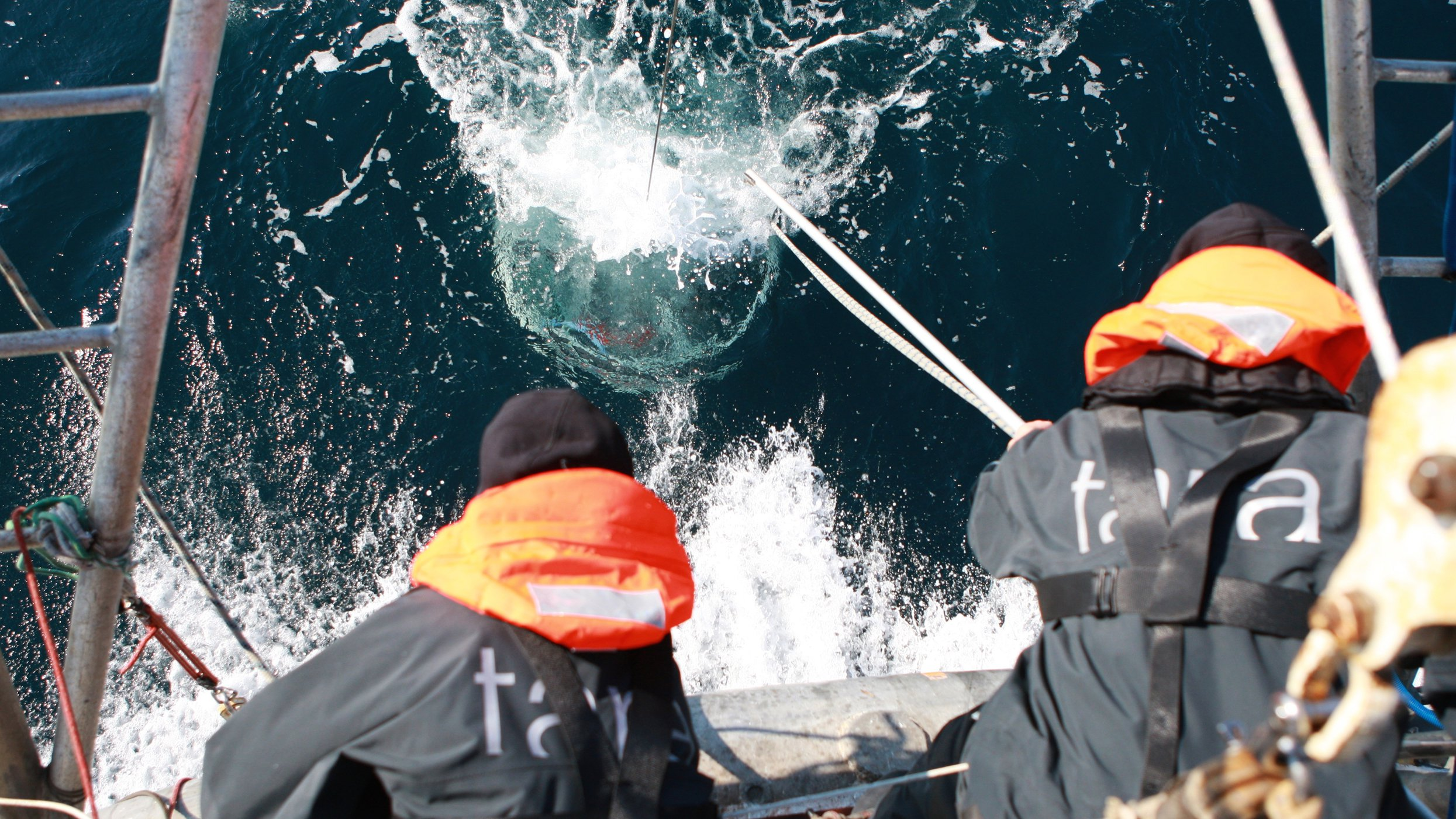 This image shows samples being collected on the Tara CREDIT A. Deniaud - Fondation Tara Ocean.jpg