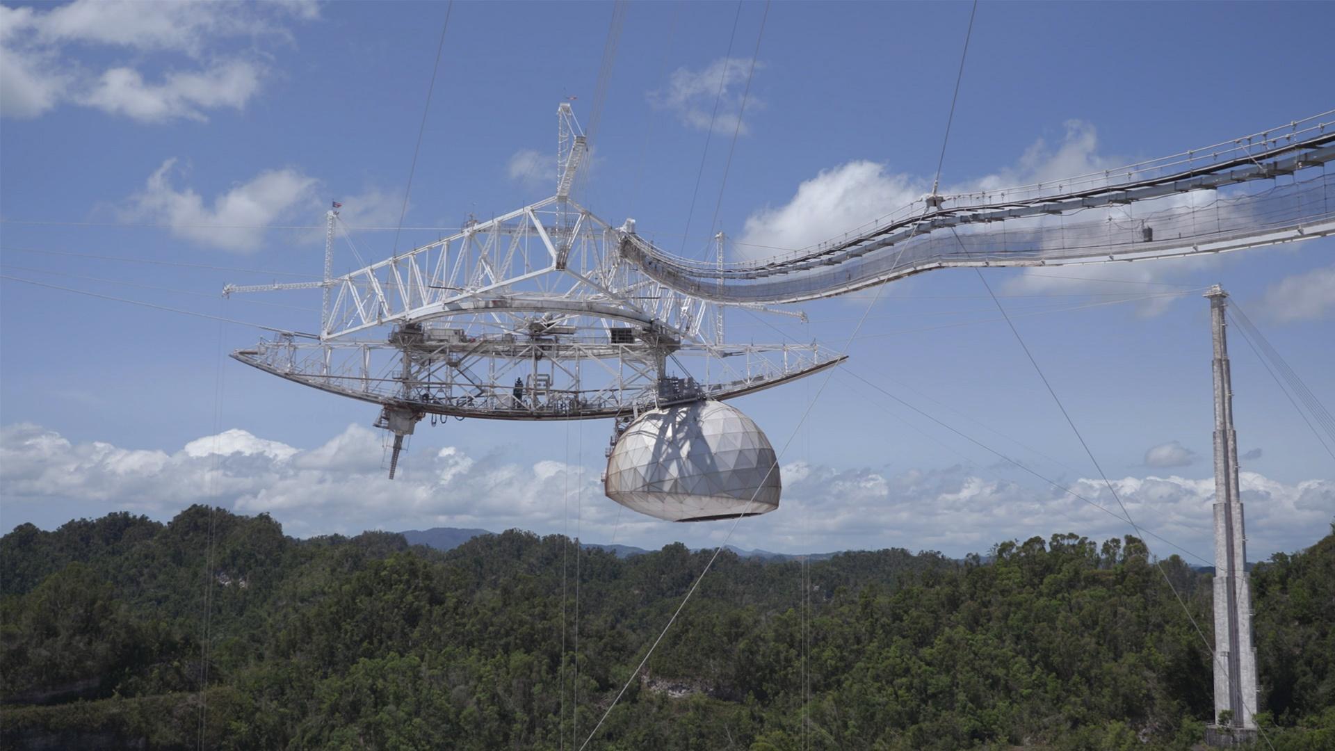 The Arecibo Observatory Hero