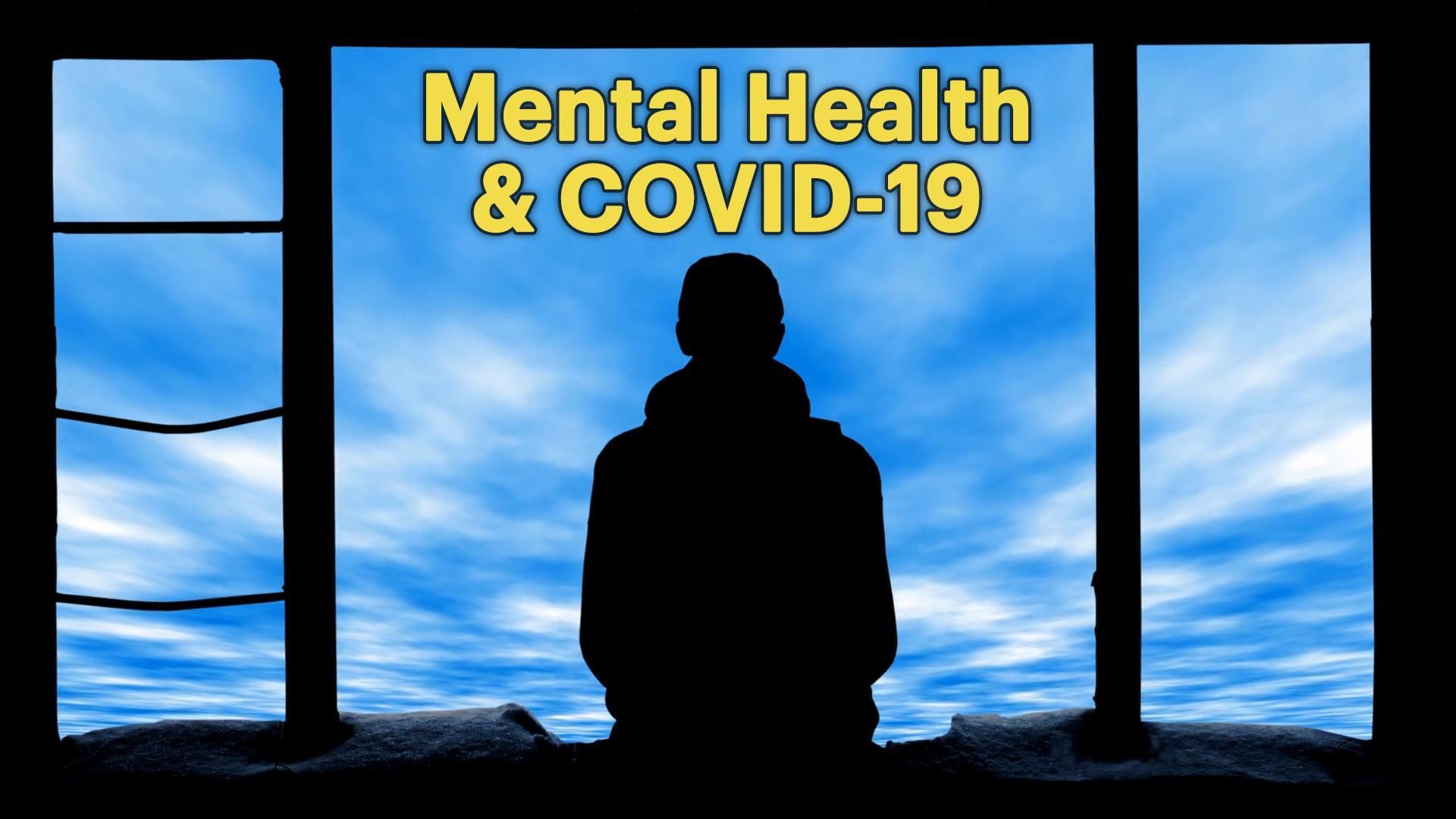 The Coronavirus Pandemic's Toll on Mental Health Hero