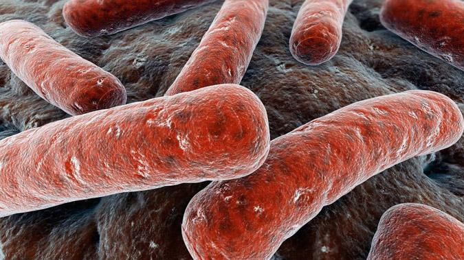 Tumor-Fighting Drugs Take on Tuberculosis