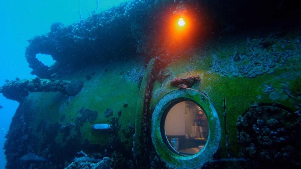 Two Weeks Under the Sea Hero