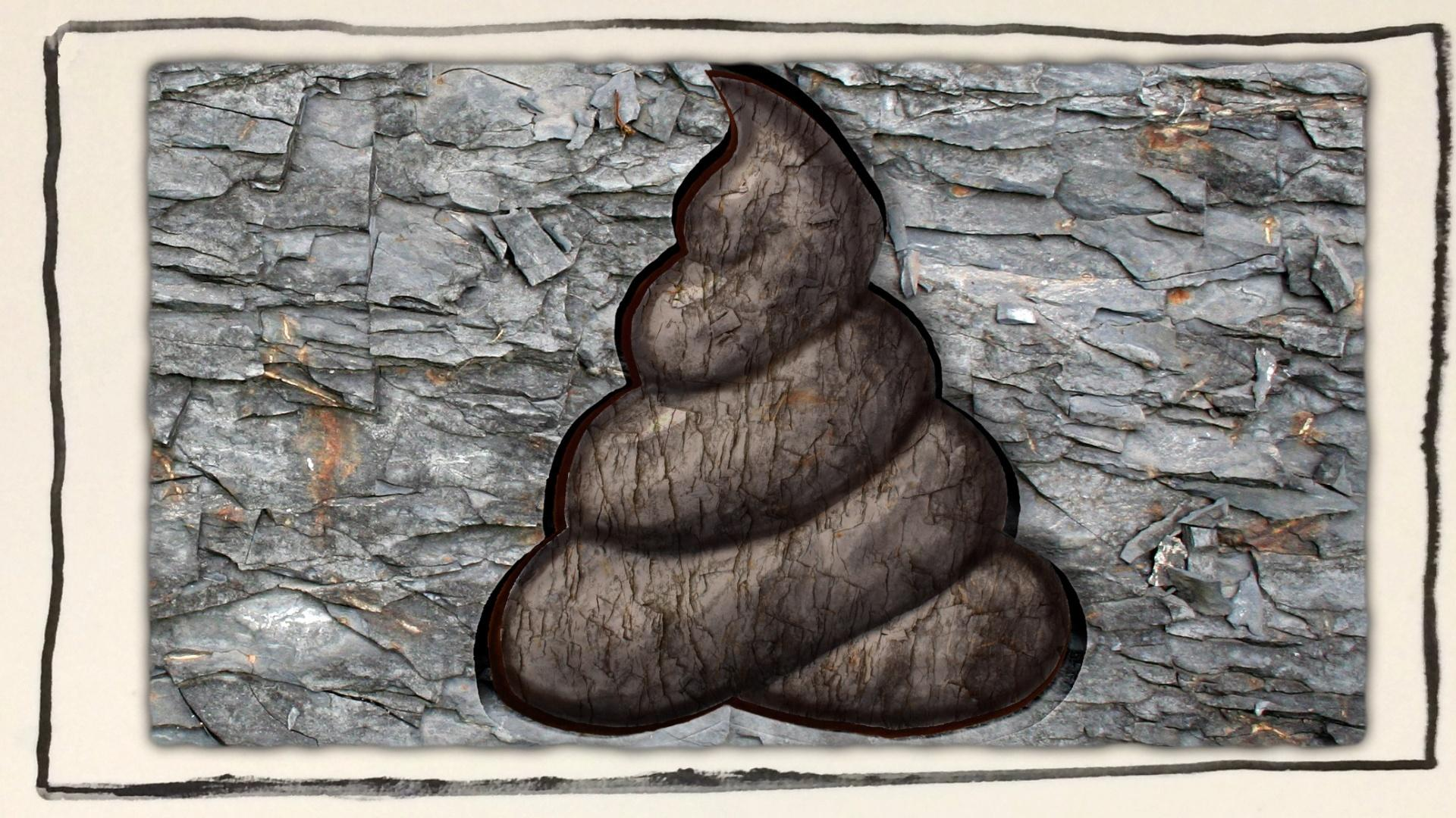 What Can You Learn From Ancient Poop? Hero