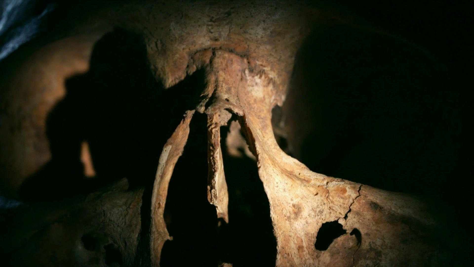 Why Did These Vikings' Bones Appear Older Than They Are? Hero