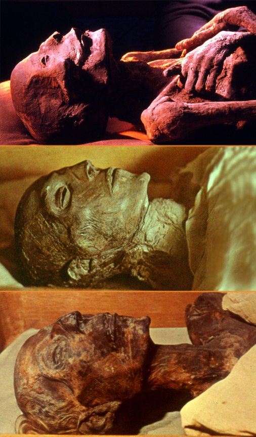 Three mummies