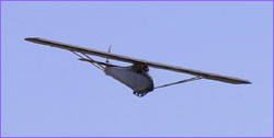 Replica glider in flight