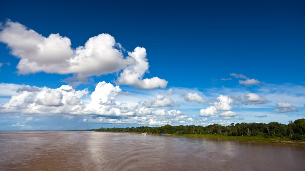 Cumulus clouds over the Amazon