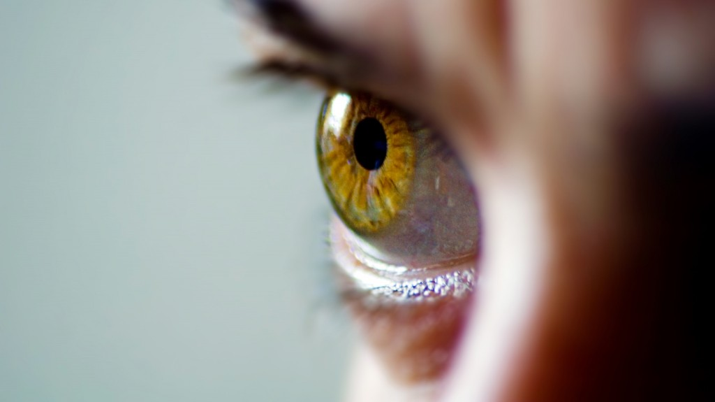 Scans of people's irises can be used as unique biometric identifiers.