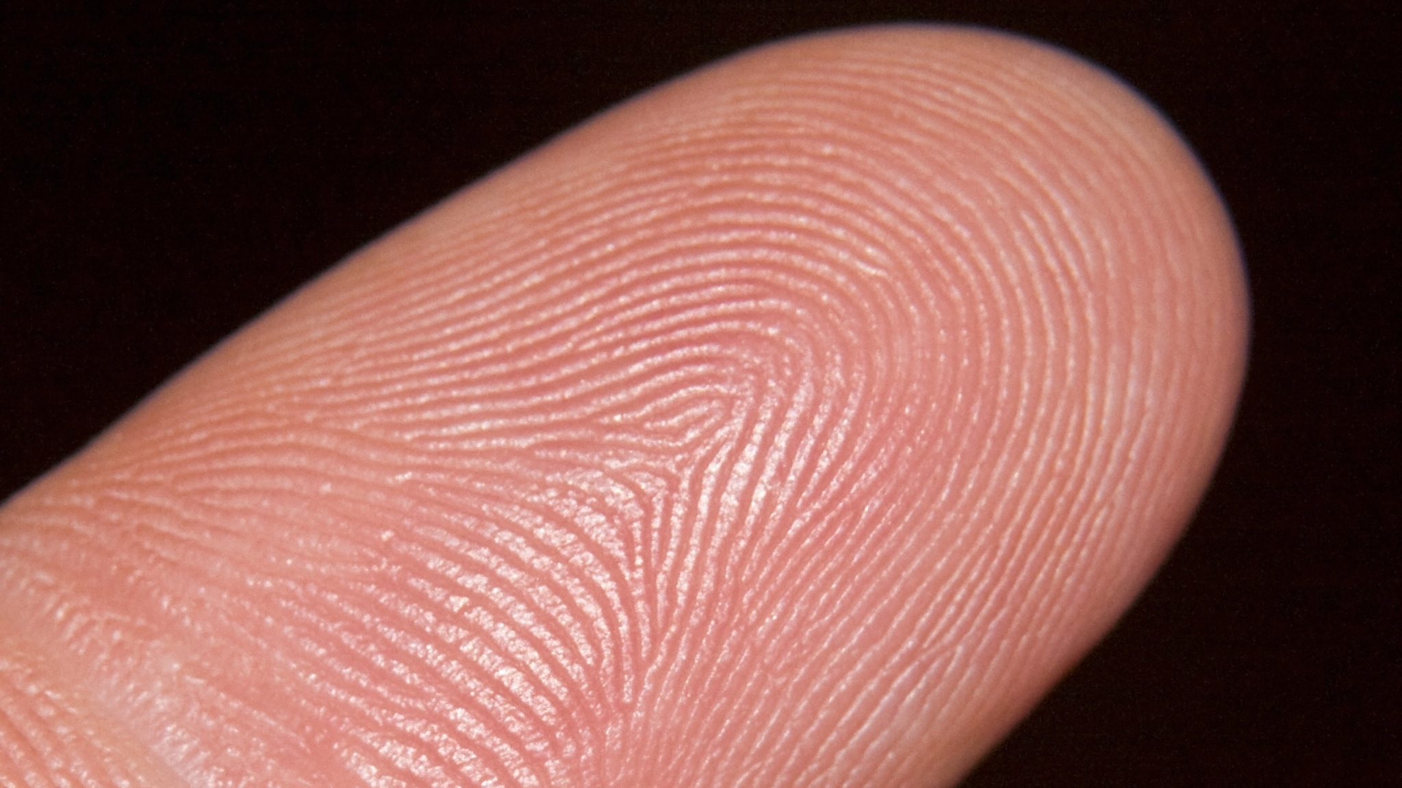 New IPhone May Have Fingerprint Authentication—Could It Be