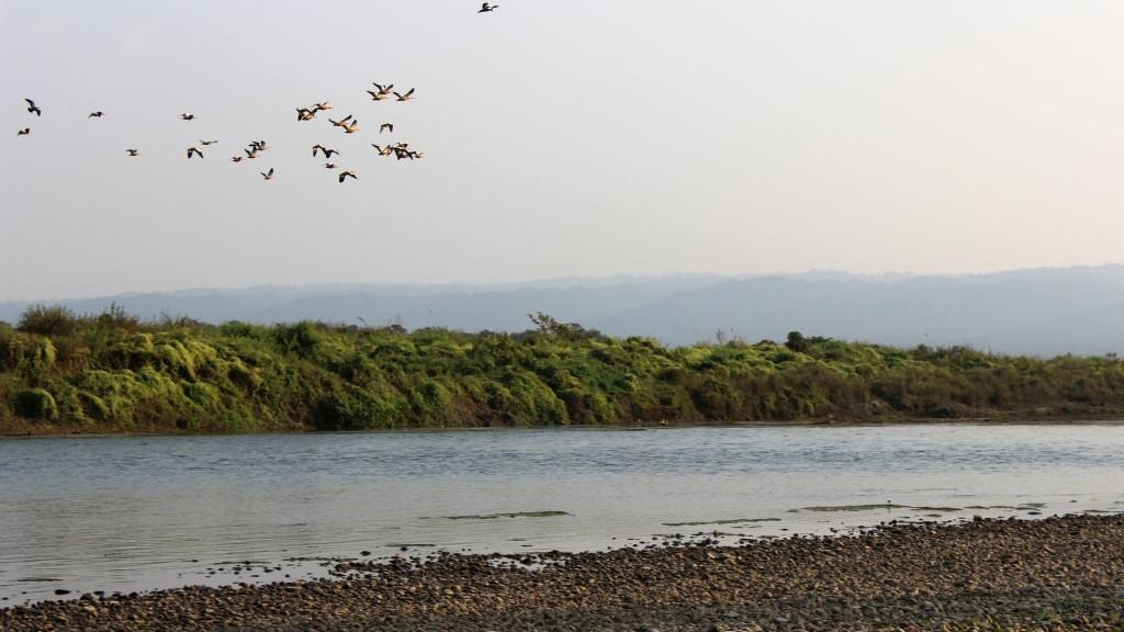chitwan-river