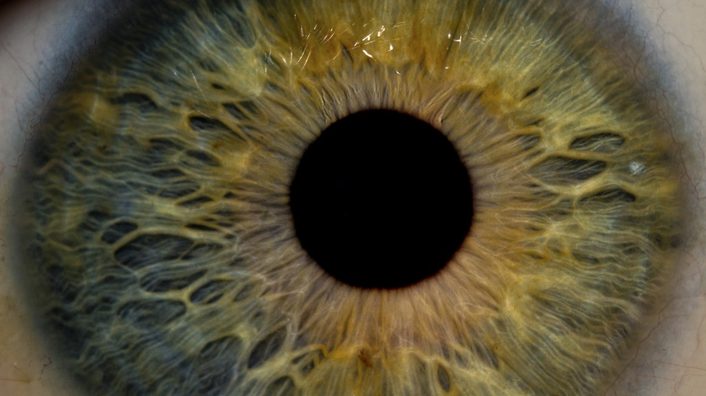 eye-pupil-cropped