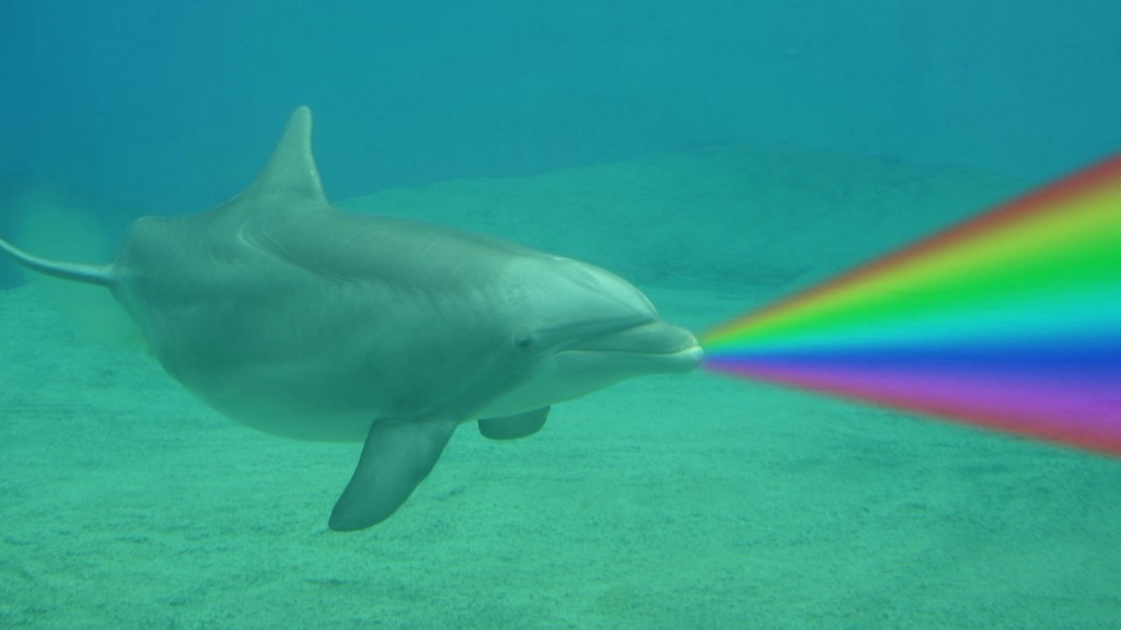 Scientists beam light in front of dolphins, accidentally ...
