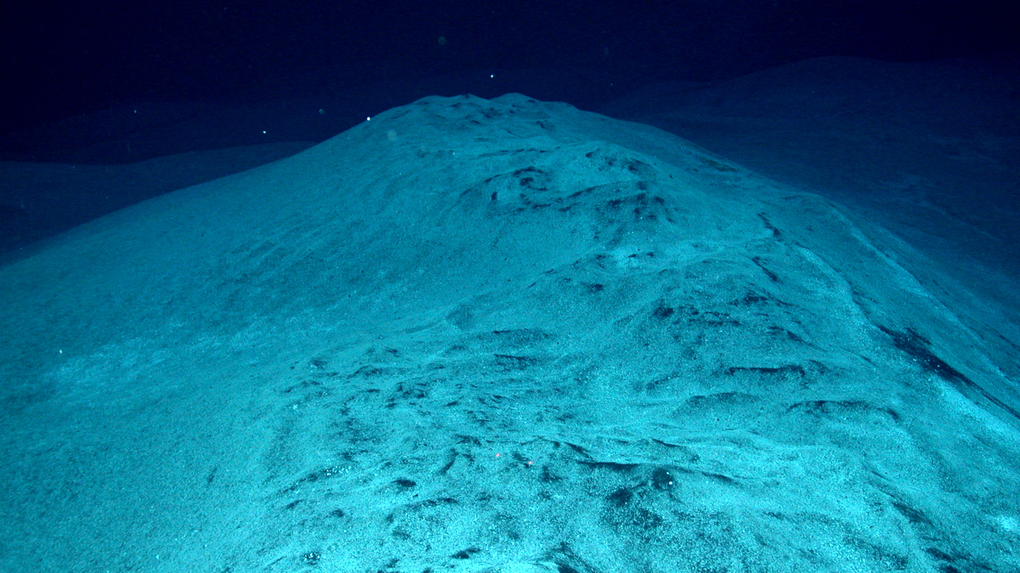 Did microbes cause the worst mass extinction ever nova for Ocean s floor
