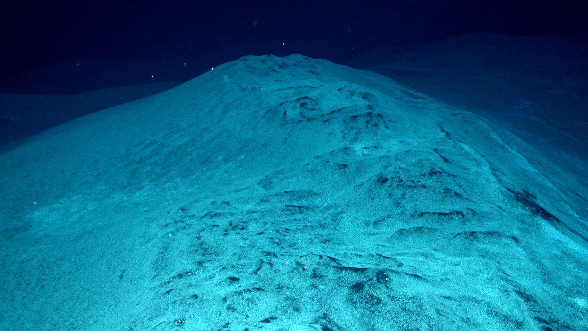 Did Microbes Cause The Worst Mass Extinction Ever Nova