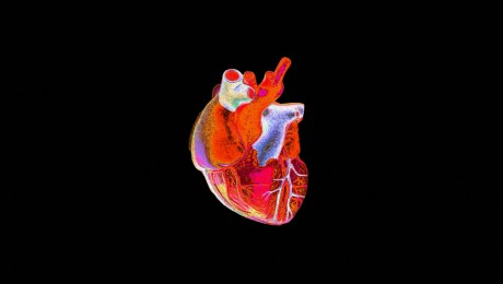 warhol-heart