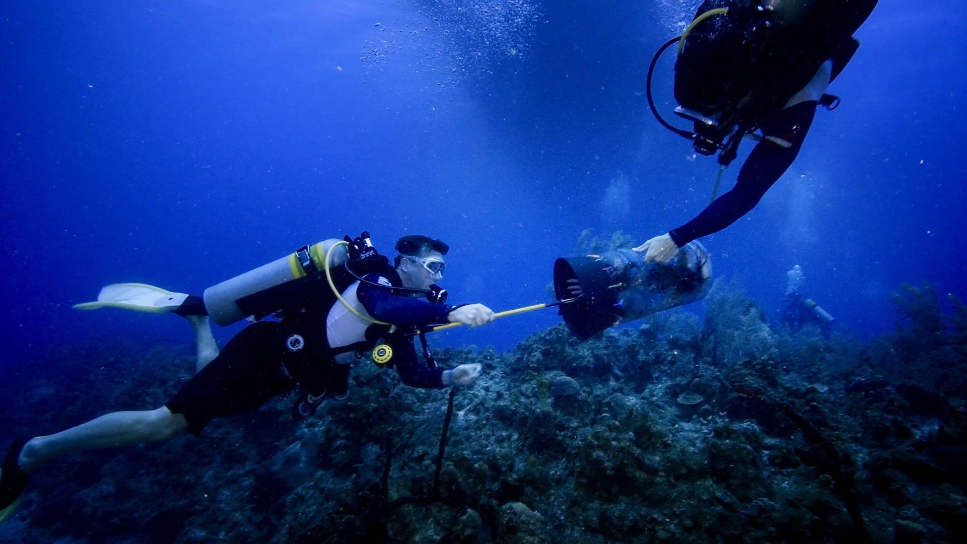 Jon Schleyer culls lionfish