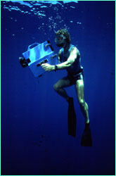 Klimley often takes an underwater video camera with him on dives.