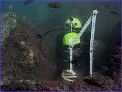 Diver measuring feature of block