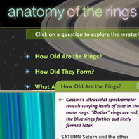 Anatomy of the Rings