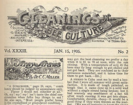 Gleanings in Bee Culture of January 15, 1905