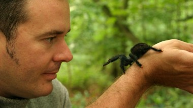 Interview: Martin Nicholas, Spider Expert