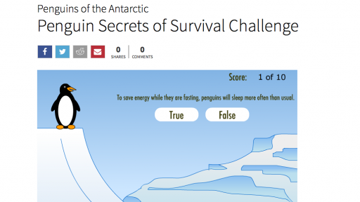 Penguin Secrets of Survival Challenge