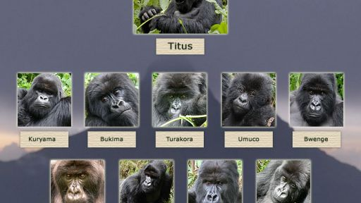 Explore Titus's Family Tree
