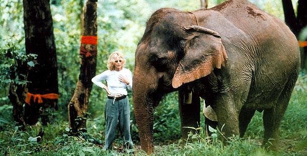 Meg Ryan and an elephant