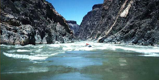 grand canyon the colorado river nature pbs
