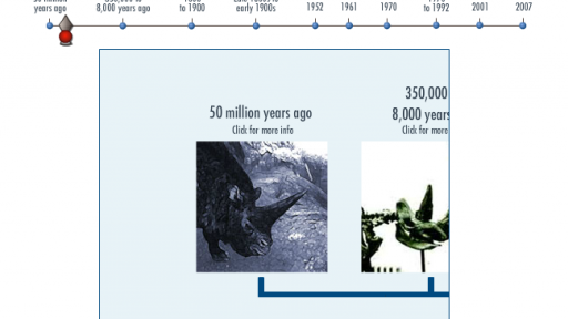 Interactive Timeline: Rhinos Past and Present