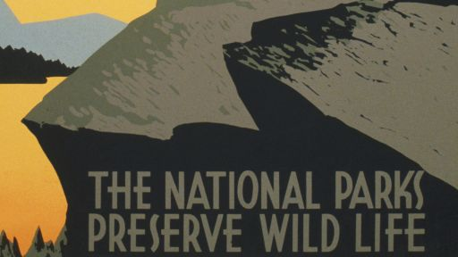 National Parks, National Forests, and U.S. Wildernesses
