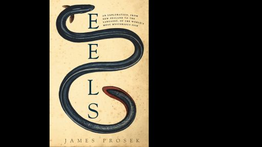 Book Excerpt: <em>Eels</em> by James Prosek