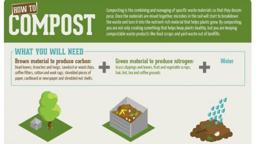 Infographic: How-To Compost