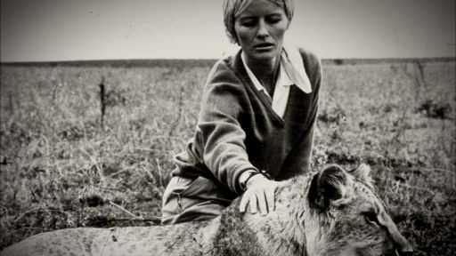 Elsa's Legacy: The Born Free Story -- Virginia McKenna Visits Elsa's Camp