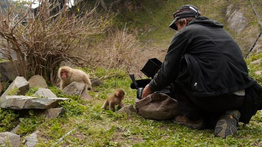Snow Monkeys -- Behind The Scenes: Making of Snow Monkeys