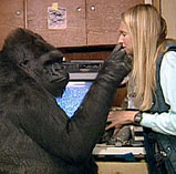 Koko and Penny share a special friendship