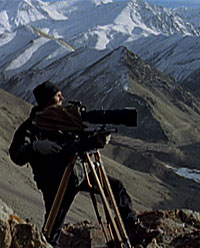 Michael Kelly searching for a snow leopard.