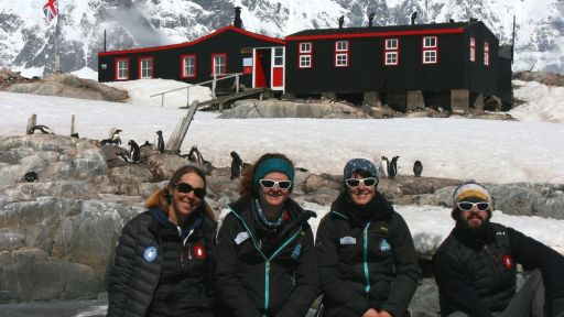 What It's Like to Live and Work Among Antarctic Penguins