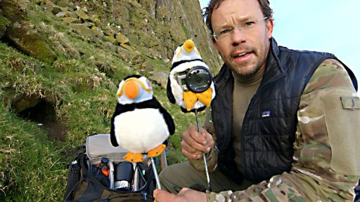 Clip |  Behind the Scenes: Puffin Cam