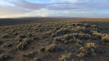 "Conserving The Sagebrush Sea, the Place ""In-between"""