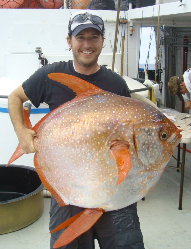 NOAA Fisheries biologist Nick Wegner holds an opah caught during a research survey off the California Coast.