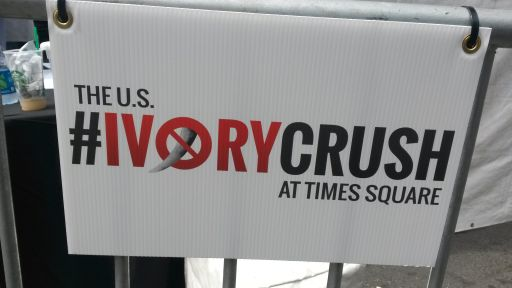 The Times Square Ivory Crush in Pictures