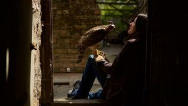 H Is For Hawk: A Memoir Of Grief, Falconry And Self Discovery