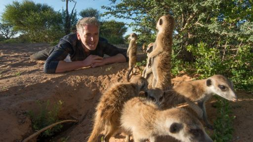 Wildlife Filmmaker Gordon Buchanan On 'Animals with Cameras'