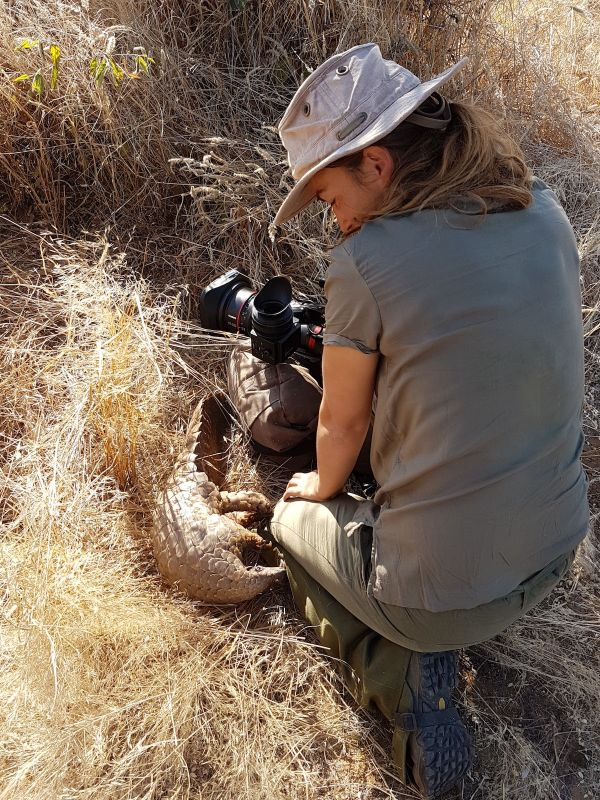 Filming The World's Most Wanted Animal