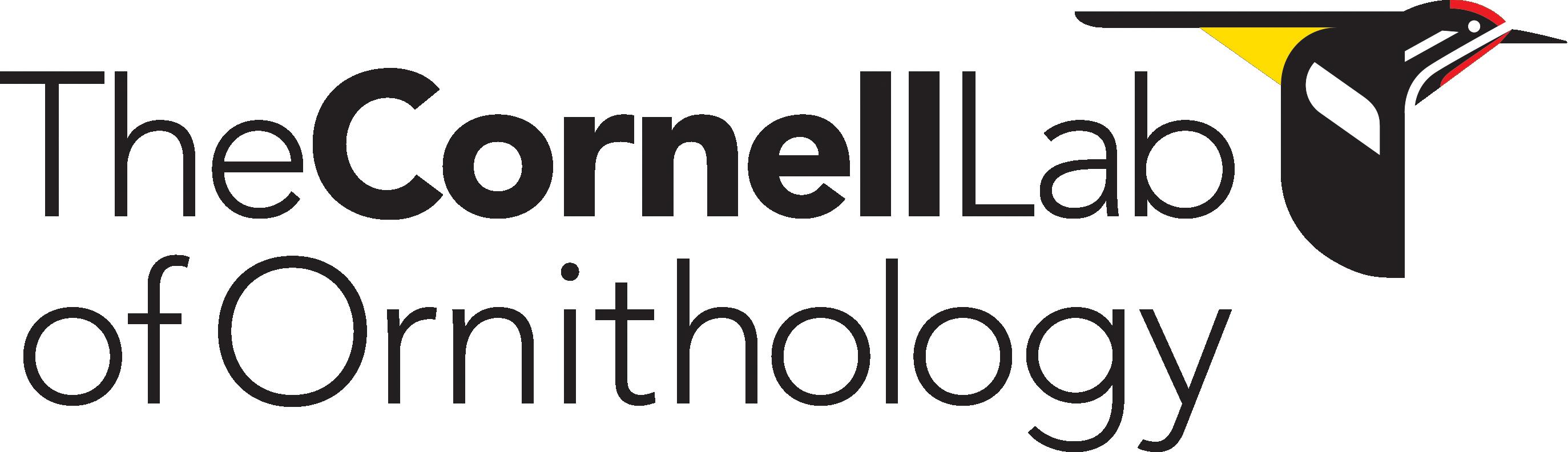 The Cornell Lab of Ornithology - Bird Cams Lab