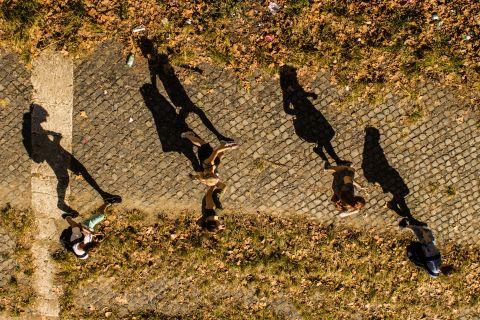 Shadow Season