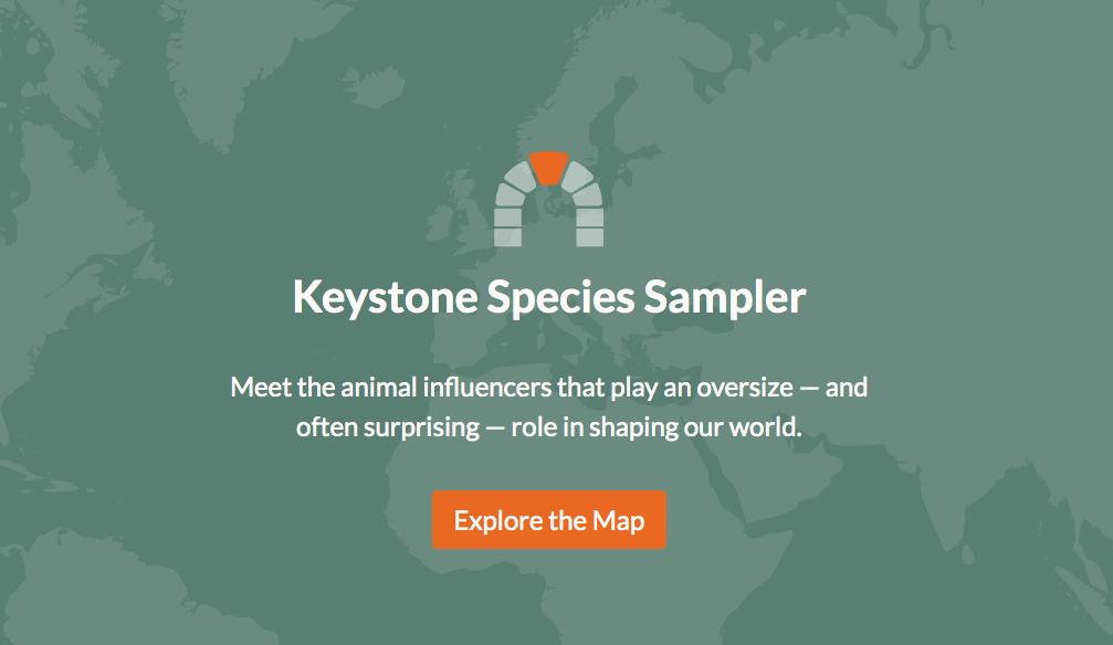 Keystone Interactive