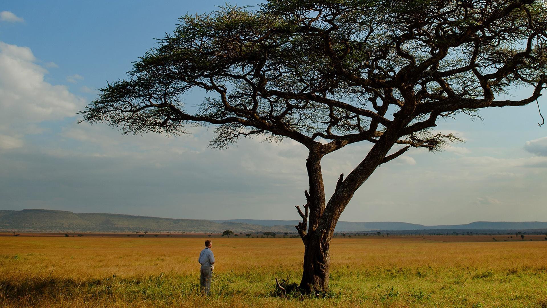 Full EpisodeThe Serengeti Rules